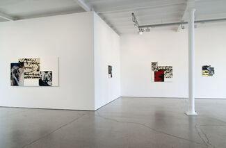 Ian Wallace Tropismes, installation view