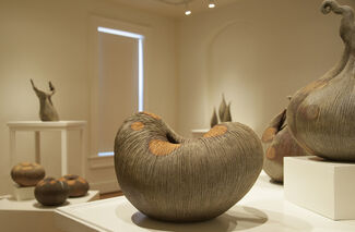 In Praise of Nature, installation view