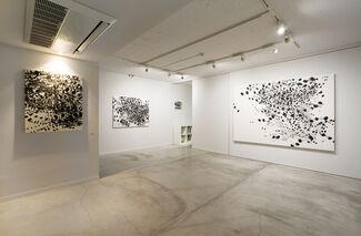 TAKAKO AZAMI - Photosynthesis, installation view