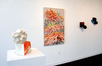 """""""Flourish"""" by Mary Warner and """"Meridian"""" by Kris Lyons, installation view"""