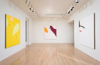 Rogue Wave Projects: Heather Gwen Martin, installation view