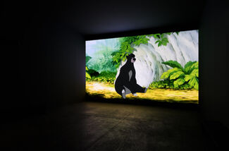 David Claerbout / The Pure Necessity, installation view