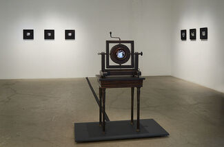 """Stacey Steers 