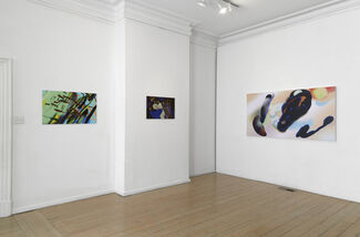 David Harley: free-form propositions #2, installation view