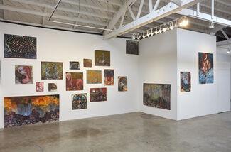 Alexandra Wiesenfeld: o, installation view