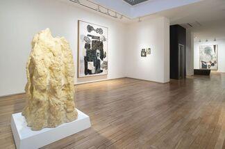 Jitish Kallat: Phase Transition, installation view