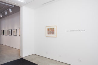 Alan Gussow: Cold Elation, installation view