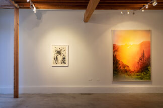 We're all in this together, installation view