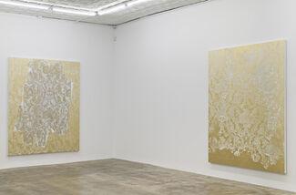 Rudolf Stingel: Part V, installation view
