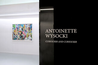ANTOINETTE WYSOCKI   Curiouser and Curiouser, installation view