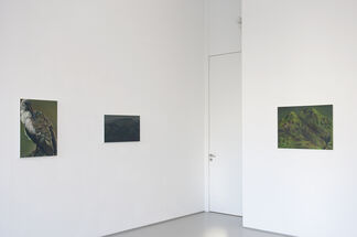In a Landscape: Ina van Zyl, installation view
