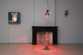 The Cosmopolitan Chicken Project - Domestication by Koen Vanmechelen, installation view