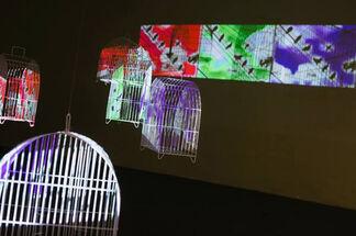 Divergentes 1, installation view