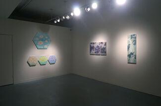 Jin Sil Kim, Victoria Loschuk, Hung Viet Nguyen Group Exhibit, installation view