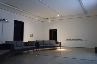 Blue Orchids, installation view