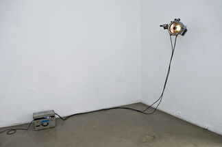 When In Rome, installation view