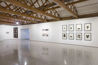 Diane Victor: Which Hunt?, installation view