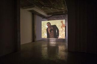 Nicole Miller - 3 works, installation view