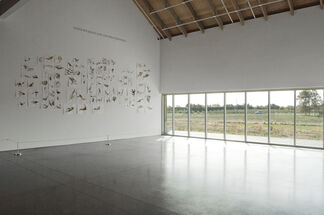 Alexis Rockman: East End Field Drawings, installation view