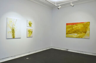 Roster Crow, installation view