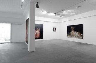 Juraj Kollár - Luxurious Desert under the Sky of Paris, installation view