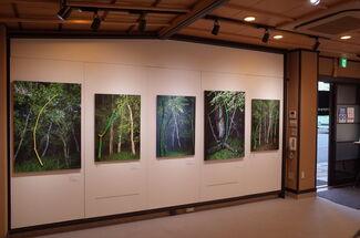 """REAL"" - Yasuo Kiyonaga Photo Exhibition, installation view"