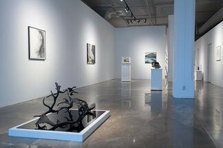 Sébastien Lafleur: Umwelt, installation view