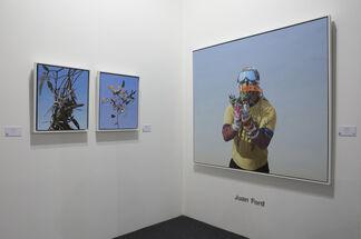 Galerie du Monde at Art Stage Singapore 2015, installation view