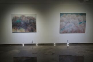 Choi Myung-sook Solo Exhibition, installation view