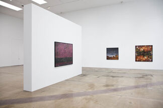 Ori Gersht : Floating World, installation view