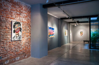 Inherent Vice | Manuel Solano, installation view