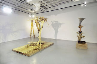 roots, installation view