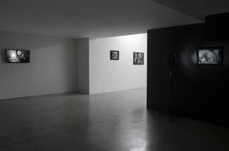 MARTÍN SICHETTI   Film Fatale, installation view