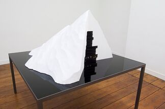 Blue, White, Red, Black by Nicolas Milhé, installation view