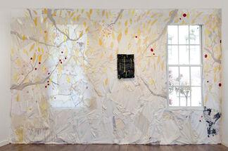 Todd Knopke: BrightAirBrilliantFire, installation view