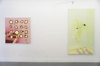 Ranee Henderson, Peanut Power Peanut Pride, installation view
