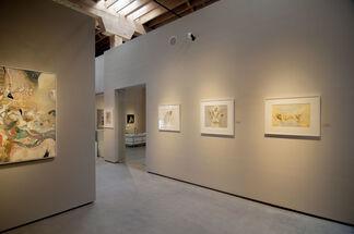 KENT WILLIAMS: Bones With Flesh, installation view