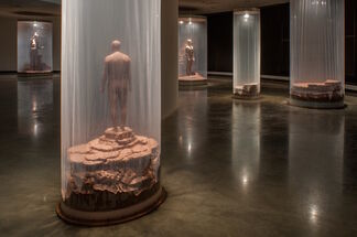 """Walter McConnell: """"Itinerant Edens: Of Fable and Facsimile"""", installation view"""