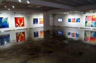Kwon Hyun-jin Solo Exhibition, installation view