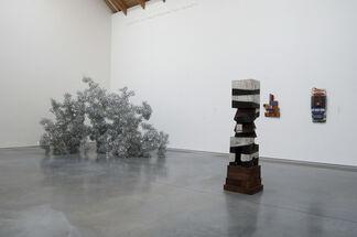 Platform: Tara Donovan, installation view