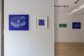 Micro Networks- New works from Michiyo Ihara, Paula Overbay and Dharma Strasser MacColl, installation view