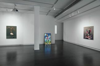 The End of Flutter Valley, installation view
