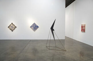 Observations in Nature by Abdul Mazid, installation view