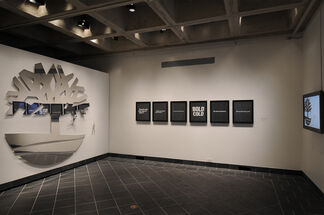 OPP: Other People's Property, installation view