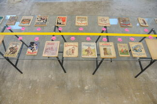From Political Propaganda to Baby Boom, installation view
