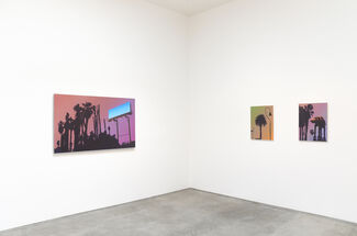 Glen Rubsamen: The Disguise Was Almost Perfect, installation view