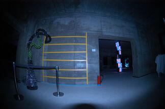 Morphology Frankfurt, installation view