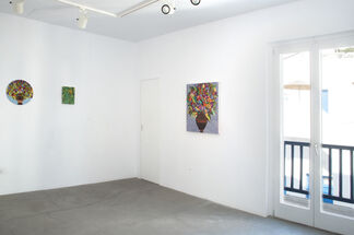 Romance on The Islands - Caroline Larsen Residency Show, installation view