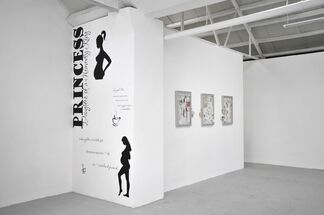 Baby Footprints Crow's Feet, installation view