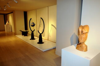 TRIBUTE TO NATURE, installation view